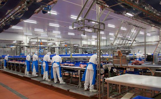 Ingeniería técnica de proyecto en Industria cárnica